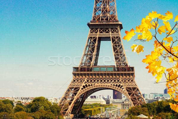 Eiffel kule Cityscape ünlü ayrıntılar şube Stok fotoğraf © neirfy