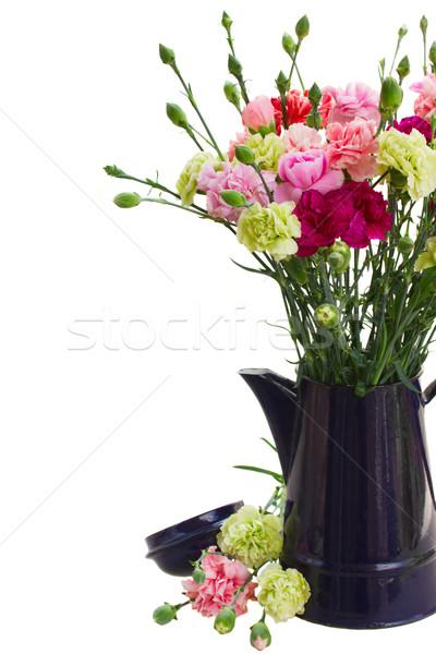гвоздика цветы синий банка Сток-фото © neirfy