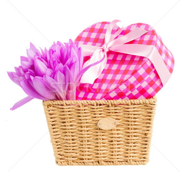 Sepet çayır safran hediye kutusu mor çiçekler Stok fotoğraf © neirfy