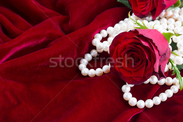 Rose rosse velluto fresche Rose Red perle wedding Foto d'archivio © neirfy