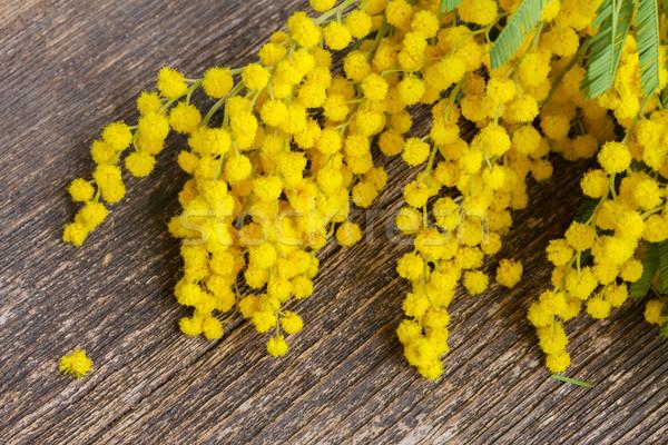 Franceza Galben Flori Masa De Lemn Floare Primăvară