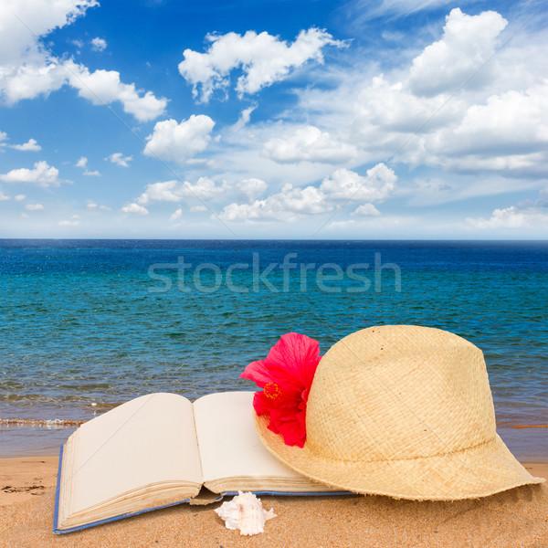 Zdjęcia stock: Słomkowy · kapelusz · książki · piasku · piasek · na · plaży · morza · strona