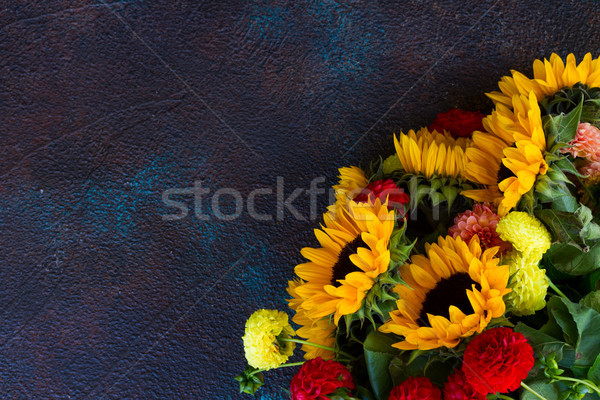 Stockfoto: Dahlia · zonnebloemen · donkere · Blauw · bloemen · oranje