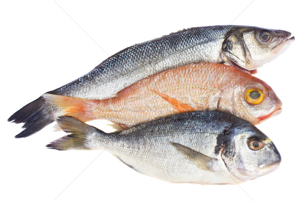 choise of fresh fish Stock photo © neirfy