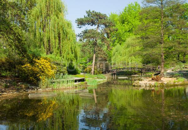 Botanikus kert nyár Lengyelország tájkép gyönyörű Stock fotó © neirfy