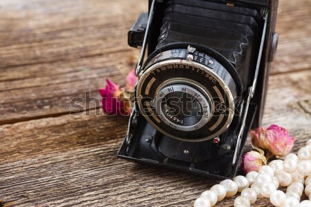 vintage photo camera Stock photo © neirfy
