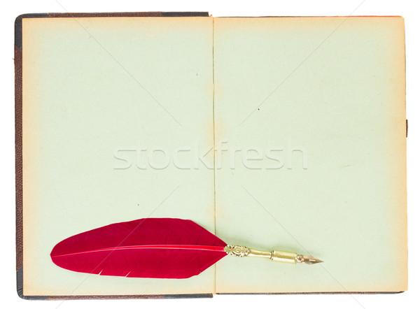 öreg nyitott könyv klasszikus piros toll toll Stock fotó © neirfy