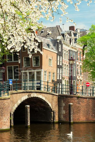 Oude huizen Amsterdam historisch brug kanaal Stockfoto © neirfy