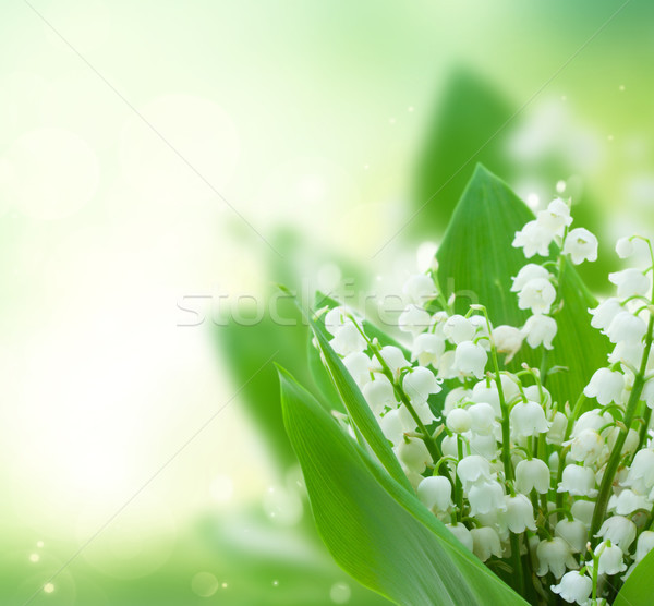 谷 花 新鮮な 緑 ぼけ味 ストックフォト © neirfy