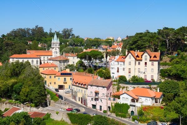 Oude binnenstad Portugal gebouw Blauw gebouwen Stockfoto © neirfy
