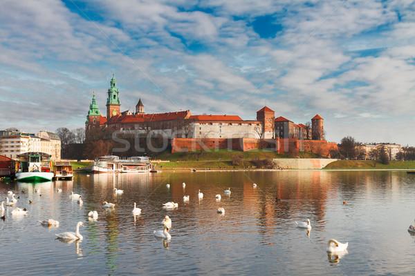 Hill Polska zamek chmury wygaśnięcia Zdjęcia stock © neirfy