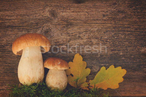 Boletus mushrooms on wooden background Stock photo © neirfy