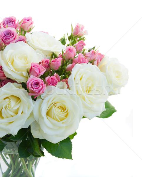 Rosa branco rosas rosa flores Foto stock © neirfy