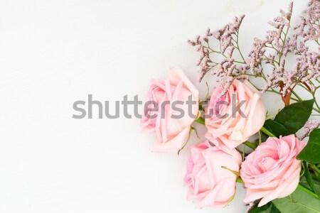 Taze gül çiçekler yaprakları çerçeve tablo Stok fotoğraf © neirfy