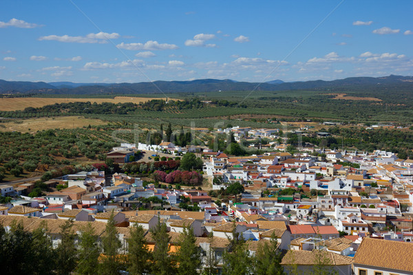 white city of Andalusia, Spain Stock photo © neirfy