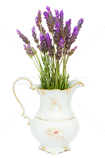lavender flowers iv vase Stock photo © neirfy