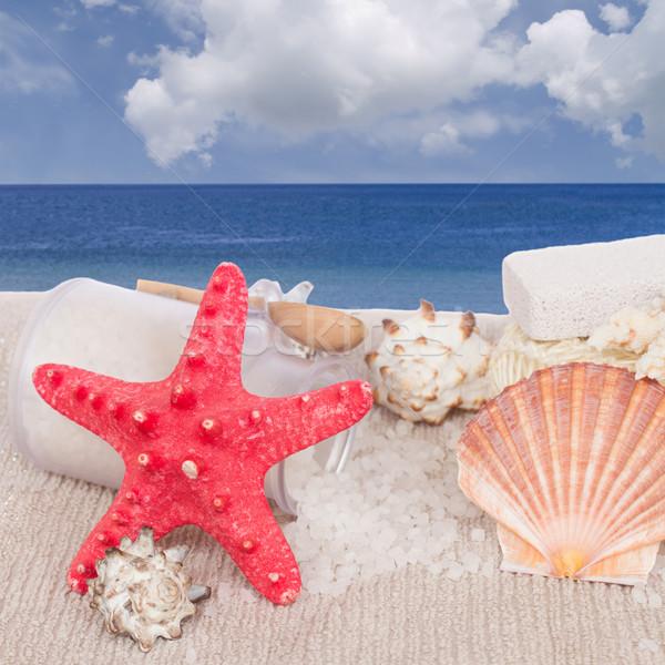 赤 ヒトデ 海 スパ 海岸 木材 ストックフォト © neirfy