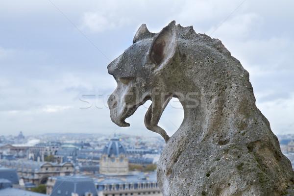 Gargoyle of  Notre Dame Cathedral Stock photo © neirfy