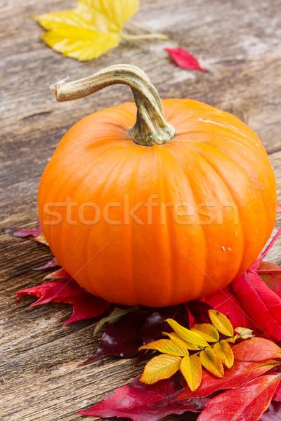 Pompoen tabel een oranje Rood Geel Stockfoto © neirfy