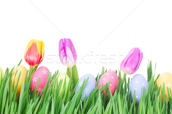 Huevos de Pascua hierba tulipanes aislado blanco Pascua Foto stock © neirfy