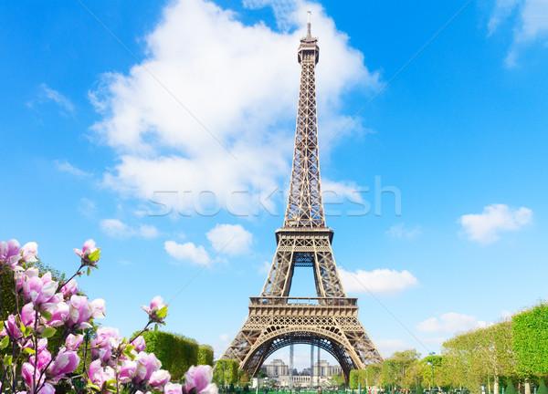 Эйфелева башни Солнечный весны день небе Сток-фото © neirfy