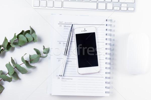 Ev ofis büro telefon yeşil modern iş Stok fotoğraf © neirfy