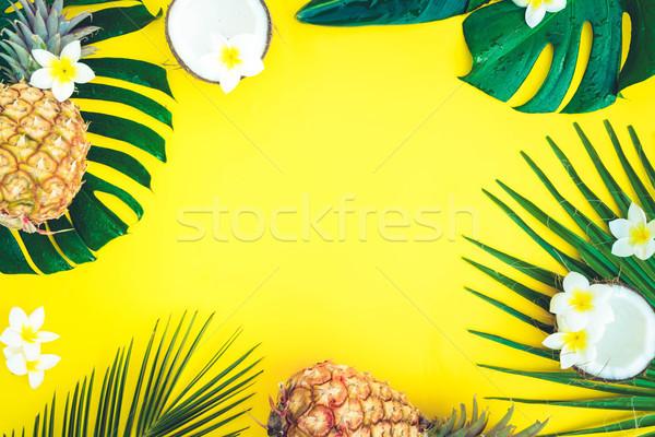 Yaz manzara çerçeve tropikal yeşil yaprakları sarı Stok fotoğraf © neirfy
