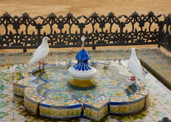ストックフォト: 入浴 · アンダルシア · スペイン · 白 · 公園