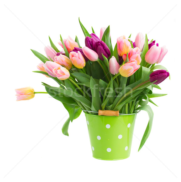 pink and violet tulips in pot Stock photo © neirfy