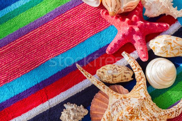 морем снарядов пляжное полотенце полосатый солнце Сток-фото © neirfy