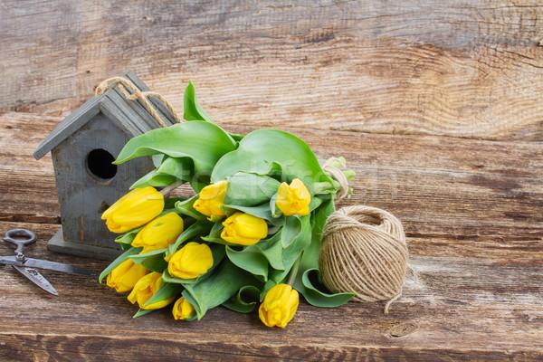 Gelb Tulpen Vogelkäfig Grenze Holz Hintergrund Stock foto © neirfy