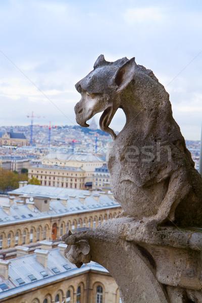 Gargoyle on Notre Dame Cathedral Stock photo © neirfy