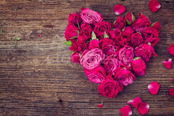 Kalp güller taze yalıtılmış beyaz instagram Stok fotoğraf © neirfy