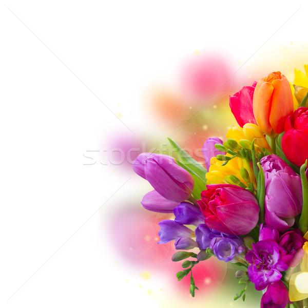 букет ярко весенние цветы белый Пасху Сток-фото © neirfy