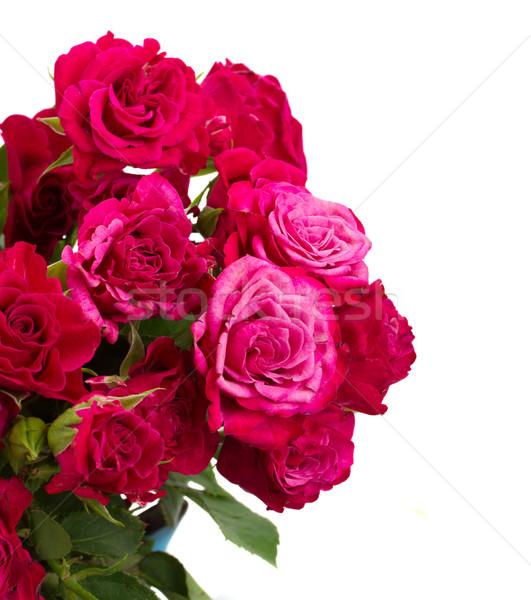 свежие розовато-лиловый роз букет Сток-фото © neirfy