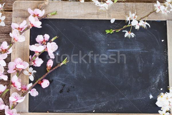 Cereja flores fresco rosa conselho Foto stock © neirfy