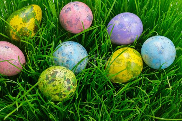 イースターエッグ 草 イースター 色の卵 緑 ソフト ストックフォト © neirfy