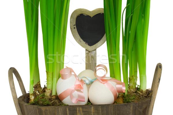 Stok fotoğraf: Paskalya · yumurtası · yeşil · etiket · kalp · şekli · Paskalya