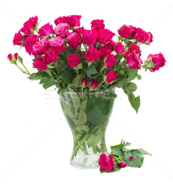 Taze leylak rengi güller cam vazo Stok fotoğraf © neirfy