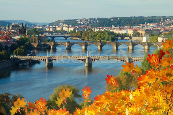 Bridges of Prague over VLtava river Stock photo © neirfy