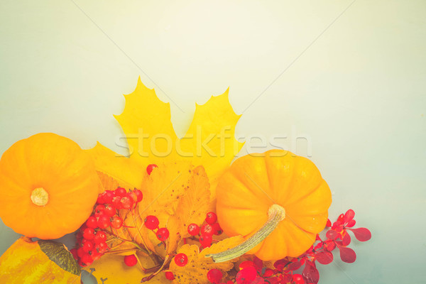 pumpkins on blue table Stock photo © neirfy