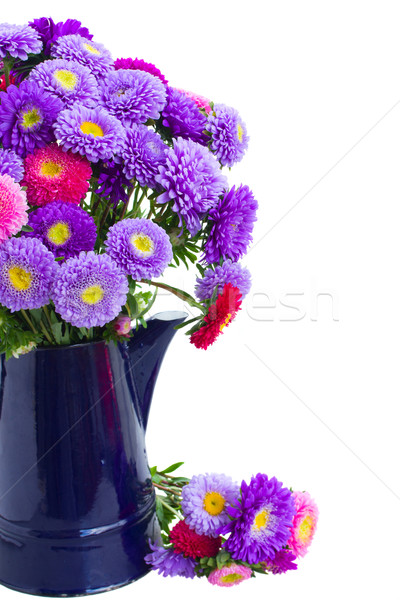 bouquet of  aster flowers in blue pot Stock photo © neirfy