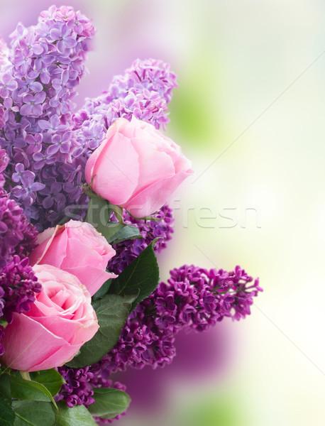 Orgona virágok rózsák friss lila rózsaszín Stock fotó © neirfy