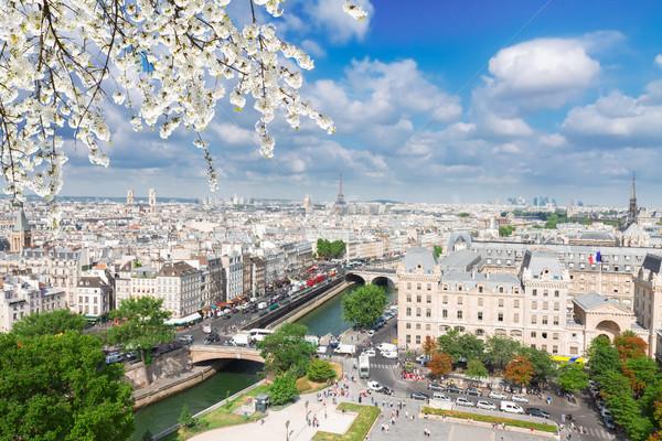 Skyline Parigi Francia città sereno primavera Foto d'archivio © neirfy