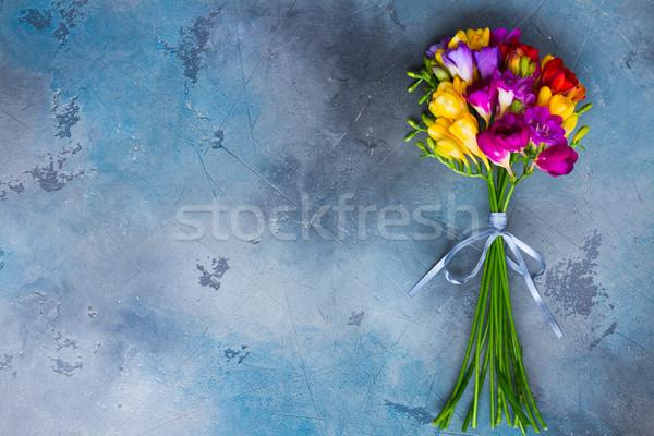 Fresh freesia flowers Stock photo © neirfy