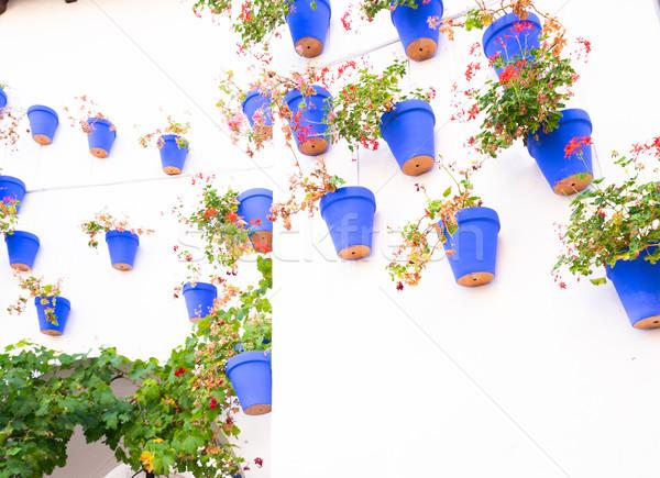 バルセロナ 細部 伝統的な 白 壁 青 ストックフォト © neirfy