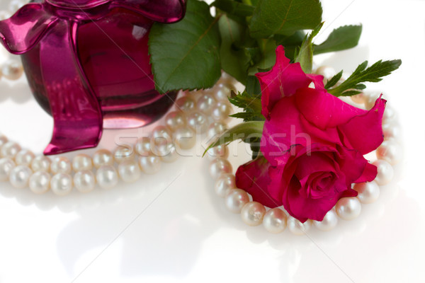 pink rose with pearl necklace Stock photo © neirfy