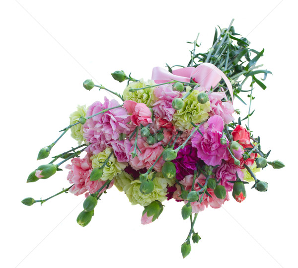bouquet of multicolored  carnation flowers Stock photo © neirfy