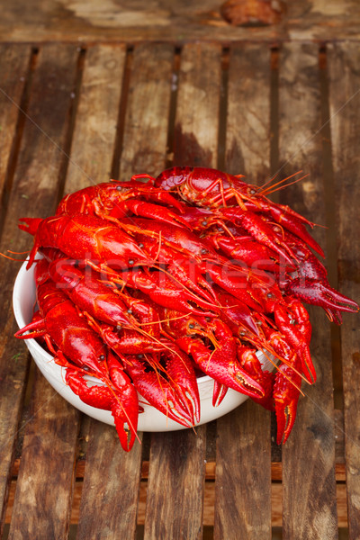 Crayfish Stock photo © neirfy