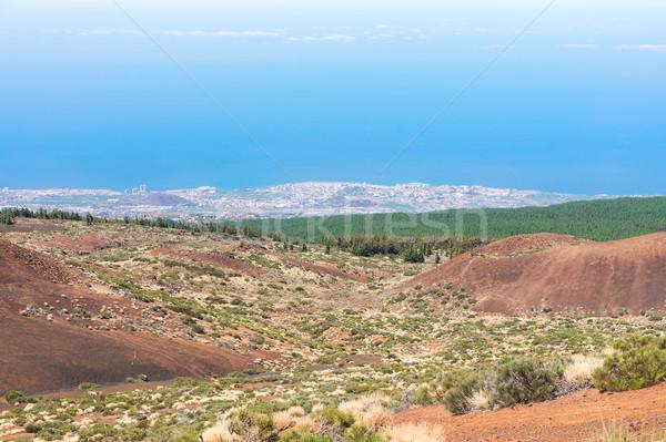 Cliffs of Tenerife island Stock photo © neirfy